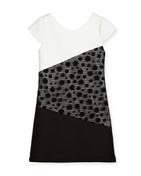 Zoe Contrast Tricolor Polka Dot Dress Black White