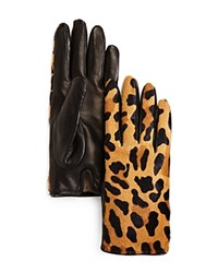 Bloomingdale's Leopard Cashmere And Calf Hair Gloves 100 Exclusive Black Leopard