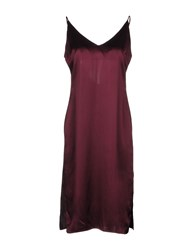 Walter Baker Knee Length Dresses Deep Purple