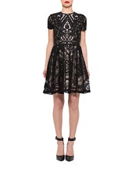 Alexia Admor Lace Fit And Flare Dress