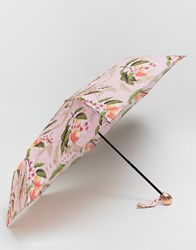 Ted Baker Compact Umbrella In Peach Blossom Print Pink Multi