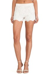 Alice Olivia High Waisted Lace Short Blush