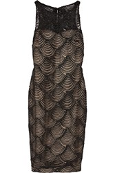 Badgley Mischka Satin Appliqued Stretch Knit Dress Black