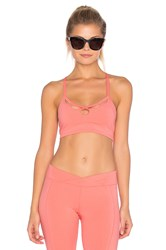 Free People Moonshadow Bra Pink