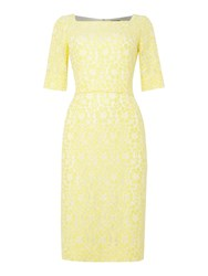 Tahari By Arthur S. Levine Asl Feminine Yellow And Ivory Lace Fitted Dress Yellow