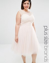 Little Mistress Plus Embellished Prom Dress Nude Pink
