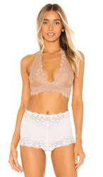 Free People Galloon Lace Halter Bralette In Cream. Nude