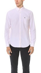 Lacoste Bengal Stripe Button Down Oxford Shirt Silk Pink White