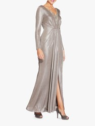 Adrianna Papell Foiled Jersey Maxi Dress Silver