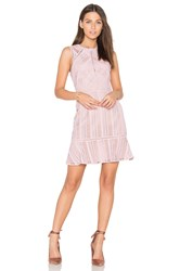 Greylin Kimmy Lace Dress Pink