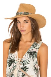 Ale By Alessandra Dylan Hat Brown