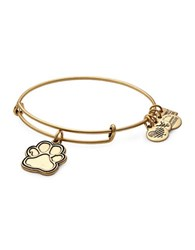 Alex And Ani Prints Of Love Charm Bangle Gold