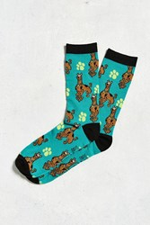 Urban Outfitters Scooby Doo Sock Teal