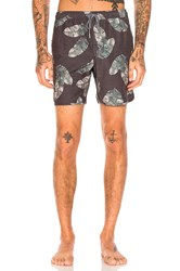 Rhythm Tropics Beach Short Charcoal