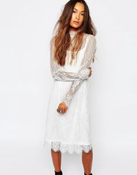 Navy London High Neck Sheer Lace Dress White