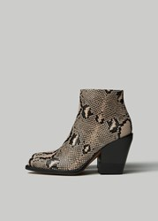 Chloe 'S Short Snake Print Boot In Eternal Grey Size 36 Leather