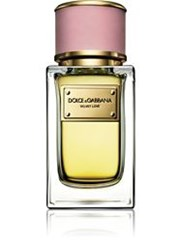 Dolce And Gabbana Women's Velvet Love Edp 50Ml Colorless No Color