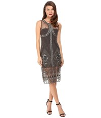 Unique Vintage Beaded Mesh Tank Flapper Dress Grey Women's Dress Gray