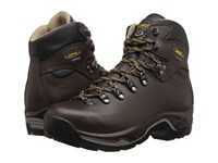 Asolo Tps 520 Gv Evo Chestnut Women's Boots Brown
