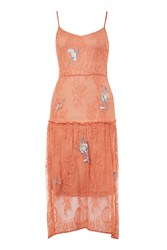 Hope And Ivy Lace Embroidery Camisole Dress By Coral