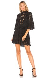 Nightcap Victorian Embroidered Mini Dress Black
