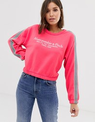 Abercrombie And Fitch Relaxed Sweatshirt Multi