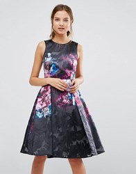 Coast Print Skater Dress Multi