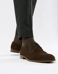 Dune Lace Up Suede Shoes In Brown Suede