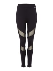 Label Lab Mesh Panelled Full Length Legging Black