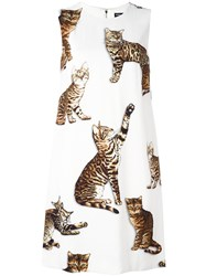 Dolce And Gabbana Bengal Cat Print Dress Nude And Neutrals