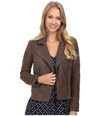 Lucky Brand Suede Moto Jacket Deep Taupe Women's Coat