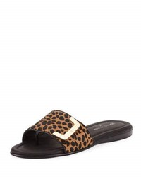Donald J Pliner Bolt Leopard Slide Sandal Black Brown