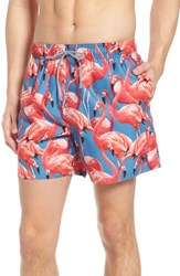 Ted Baker London Pintano Slim Fit Flamingo Swim Trunks Pink