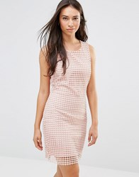 Lavand Grid Sheer Layer Shift Dress In White Pink