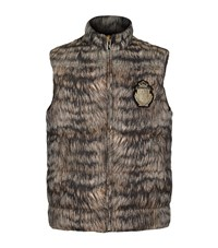 Billionaire Crest Print Gilet Male Brown