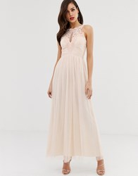Little Mistress Tulle Maxi Dress With Lace Detail Pink