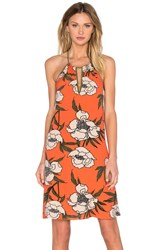 1. State Halter Trapeze Dress Coral