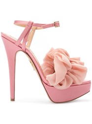 Charlotte Olympia Serine Pumps Pink And Purple