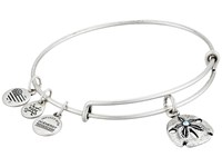 Alex And Ani Seaside Sand Dollar Iii Bangle Rafaelian Silver Bracelet
