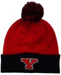 Top Of The World Youngstown State Penguins 2 Tone Pom Knit Hat