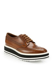 Prada Platform Leather Wingtip Brogues Tobacco