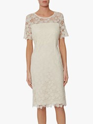 Gina Bacconi Sapphire Lace Embroidered Dress Butter Cream