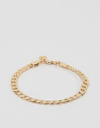 Chained And Able Crub Chain Bracelet In Gold Gold