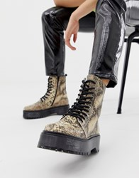 Bronx Snake Print Leather Chunky Lace Up Boots Multi