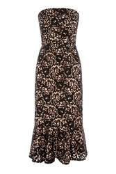 Warehouse Strapless Premium Lace Dress Black