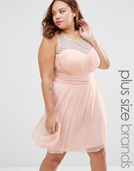 Junarose Plus Clea Skater Dress With Lace Top Pearl Blush Pink
