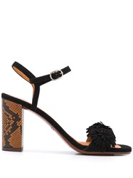 Chie Mihara Open Toe Snakeskin Effect Sandals Black
