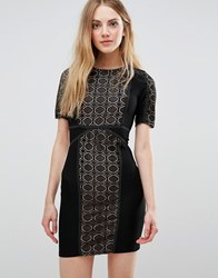 Wyldr Lace Dress With Contrast Lining Black