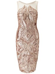 Adrianna Papell Sequin Panel Illusion Cocktail Dress Rose Gold
