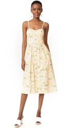 Rebecca Taylor Sleeveless Firefly Floral Dress Ballet Combo